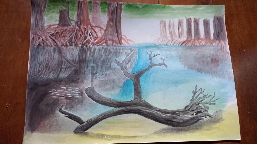 Mida creek by SEB-Belcher