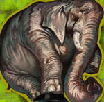 elephant papa by k-BOSE