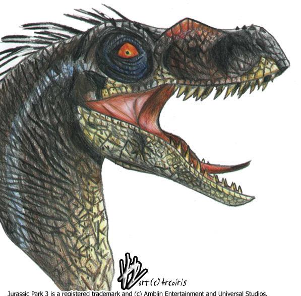 JP3 Velociraptor by ladyiceblue on DeviantArt