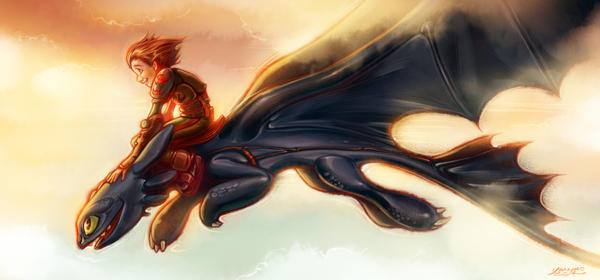 How To Train Your Dragon Fanart by youngae