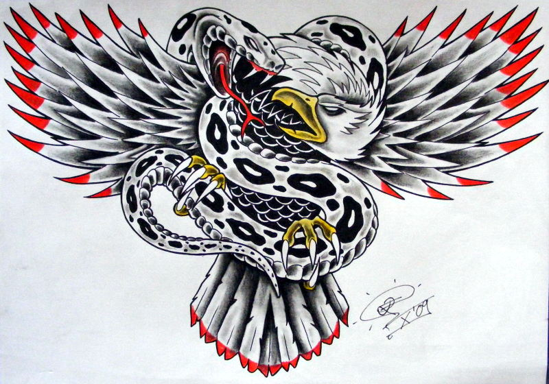 snake 39 n 39 eagle by robert franke on deviantart. Black Bedroom Furniture Sets. Home Design Ideas
