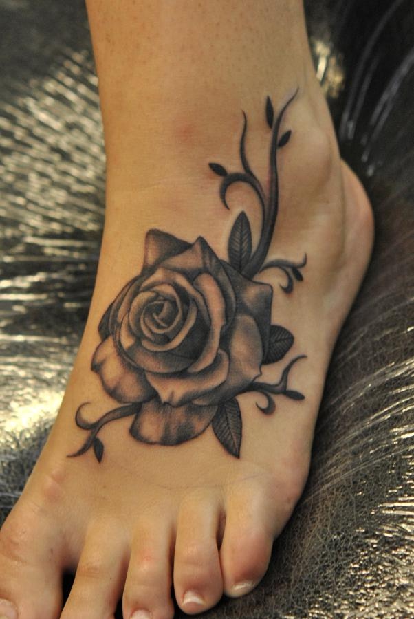 rose on foot by Robert-Franke