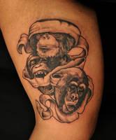 three apes again by Robert-Franke