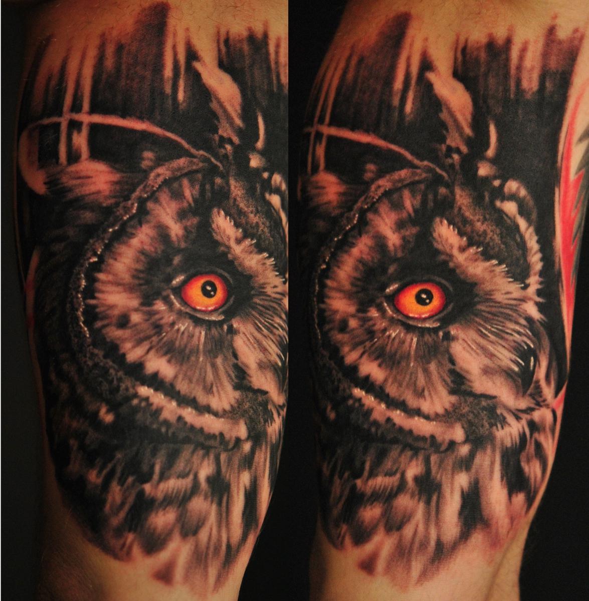 long eared owl by Robert-Franke
