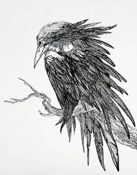 Crow woman