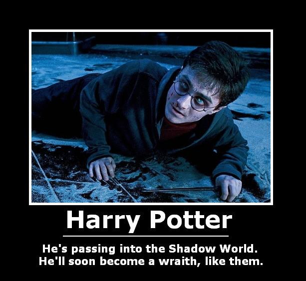 Harry Potter Demotivational 2 by will-o-the-wispy