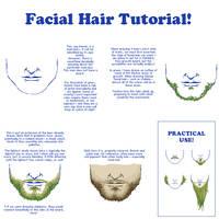 Facial Hair Tutorial by LieutenantSheesha