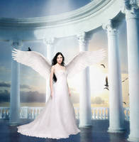 Angel's Wings by TearsOfEterinty