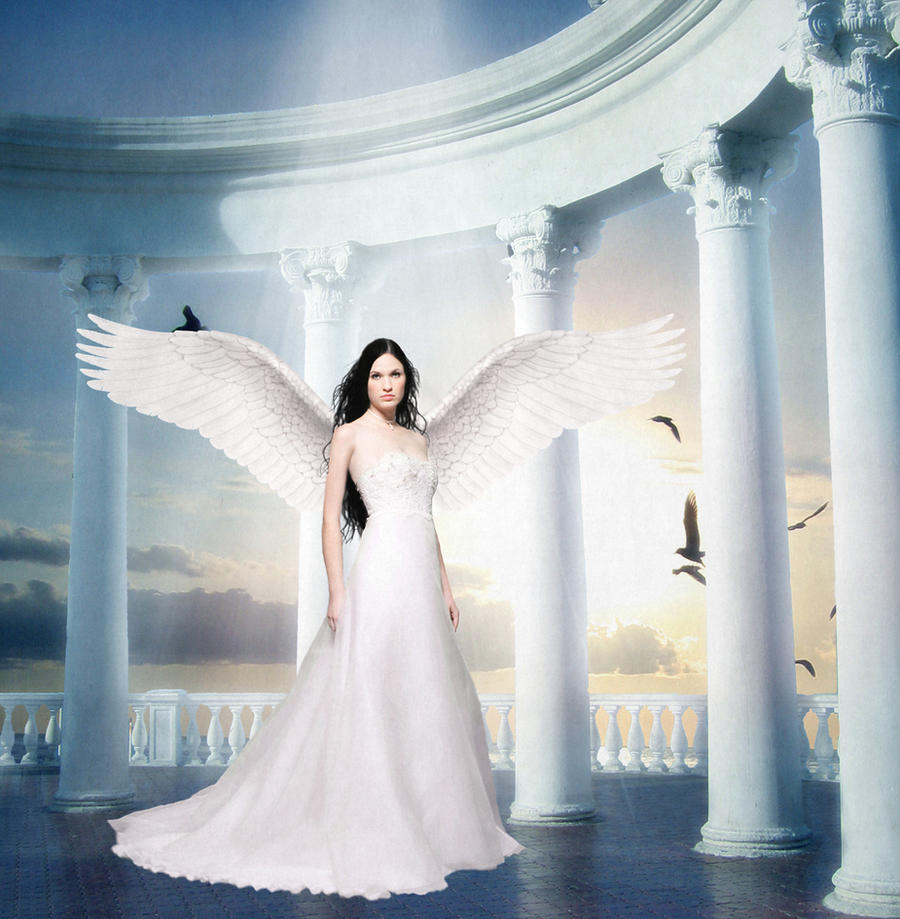 Angels Wings by