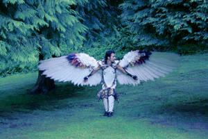 rainbow wings on sedek by juliatheinnocent