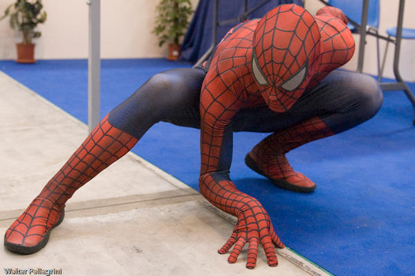 Romics 2008 - 4 Spiderman by LarsVanDrake