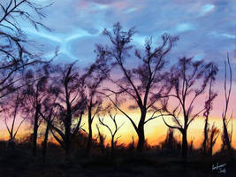 Aurora Sunset by karlandrews