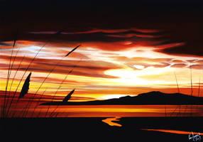 Golden Hues by karlandrews