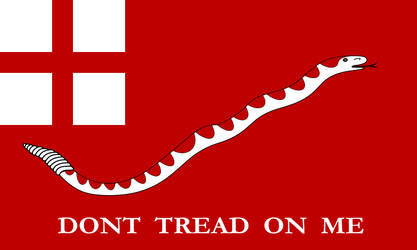 International Flag of Liberty by Rufusade