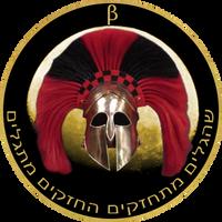 Warriors Beta Logo by MssSyndrom