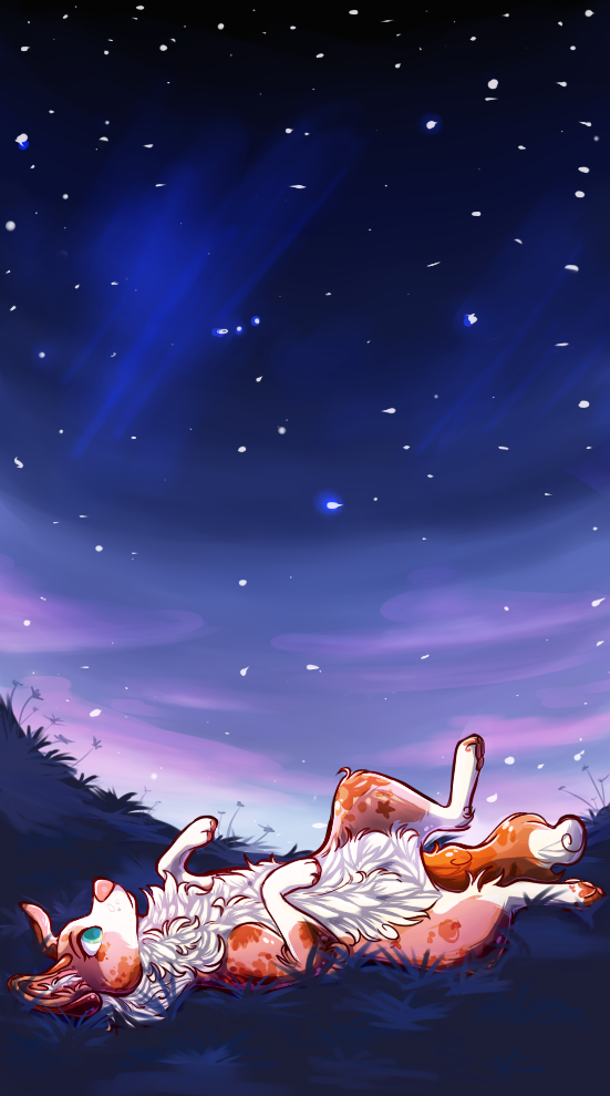 Stargazing by Miinkee