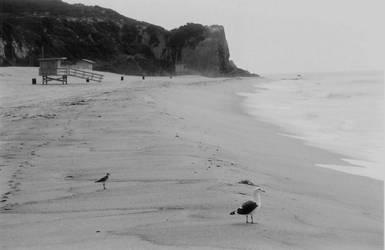 Malibu Beach California