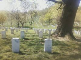 Graves by brambleclawandjaypaw