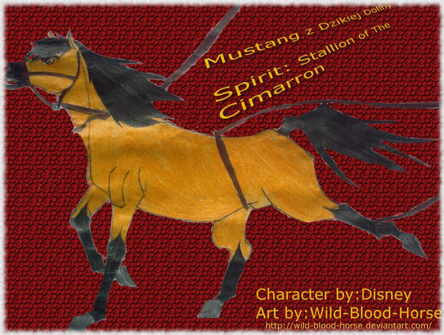 Mustang Z Dzikiej Doliny By Wild Blood Horse On Deviantart