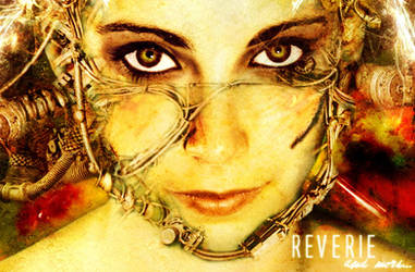 Reverie and more