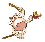 Kung Fu Cat by Festiva