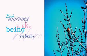 Being Reborn