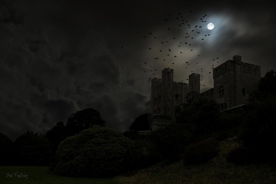 Dark castle and birds - no 1 Dark Fantasy Castle