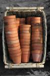 plant pots in a basket.