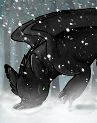 Toothless loves the snow