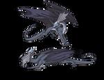 Adolescent Mirror Dragons