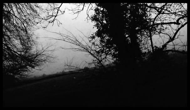 Enjoy The Darkness