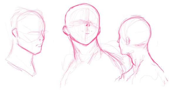 head sketches by dreddstar on deviantart