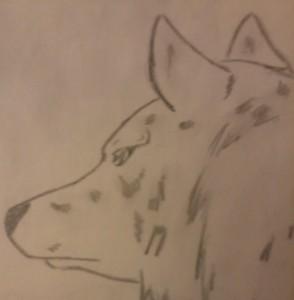 Shagpaw's Profile Picture