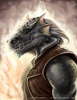 Comm: Dragonborn by No-Nami