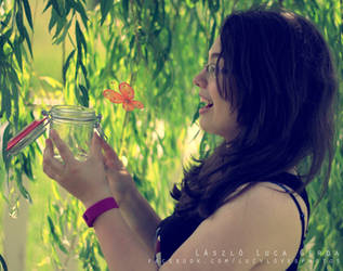 Butterfly collecting by Bucikah