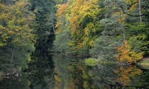 Autumn on Wolin Island by Wirikos
