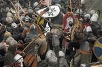 Vikings in Wolin 2