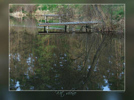 Wet silence by Wirikos