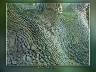 Old Oak Skin by Wirikos