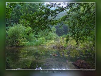 Hidden Park 2 by Wirikos