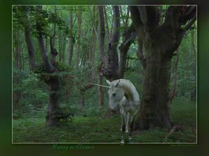 Meeting an Unicorn
