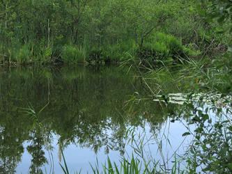 Zatorek Lake by Wirikos