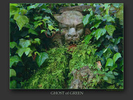 Ghost of Green by Wirikos