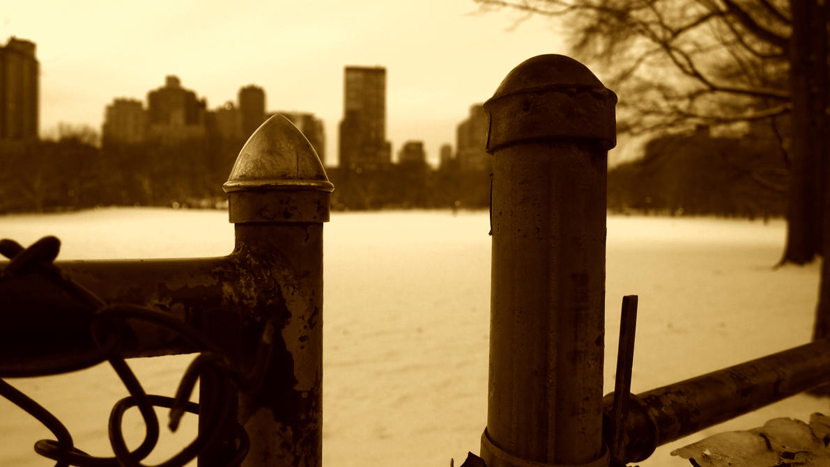 Snow in Central Park by cjeccybut