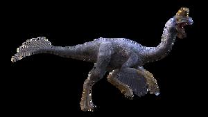 Oviraptor:transparent