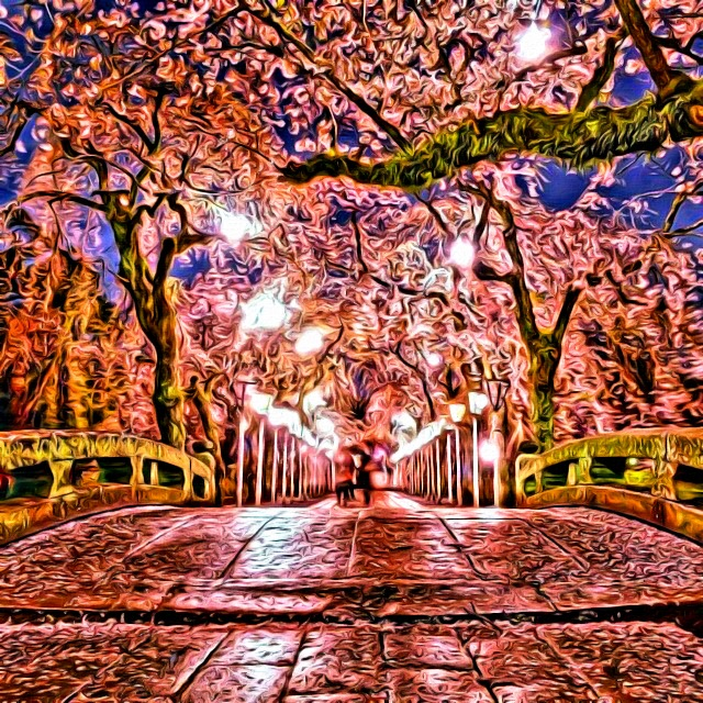 Cherry Blossoms in Moonlight by M0rden