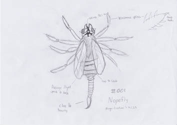 #001 Nopefly