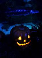 Halloween barracuda by UniqueNudes