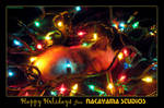 2005 Holiday Card
