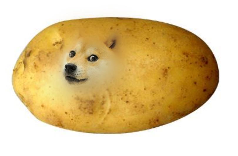 Potato Shibe Wow By Potatoe Sama On Deviantart